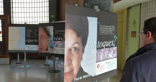 Curs 11-12 - Exposició cartells solidaris