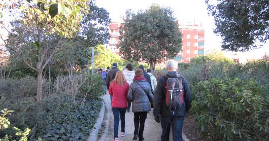 Curs 15-16 AMPA Caminada Glòries-Arc de Triomf